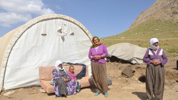 21 Yıl Sonra Kato Dağındaki Yayladalar