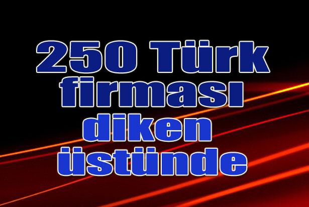 250 Türk Firması Diken Üstünde