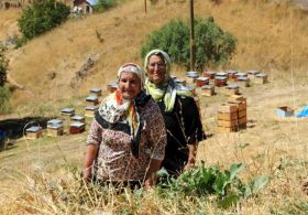 Ahpanis Vadisi Bal Üretimiyle Öne Çıktı