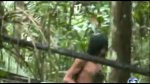 Amazon Ormanlarında Yaşayan Kabile Görüntülendi