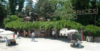 Ankara Hayvanat Bahçesi Geçici Olarak Ziyarete Kapatılacak