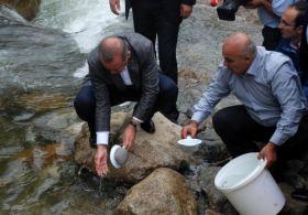 Başbakan Erdoğan Dereye Yavru Balık Bıraktı