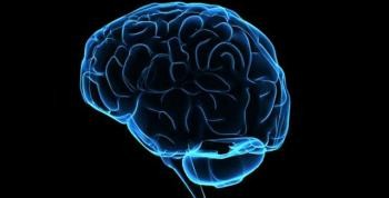 Beyin Ölüm Anında Ne Yapıyor?