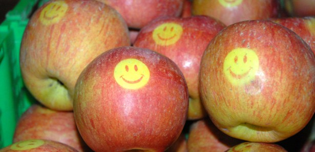 Gülen Elma Yetiştirdiler